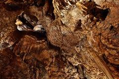 Limestone Cave Stock Photos