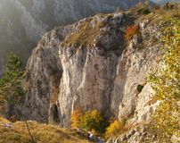 Limestone cliff Royalty Free Stock Image
