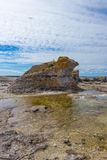 Limestone cliff on the East coast of Sweden Royalty Free Stock Photos