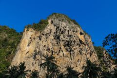 Limestone cliff in Krabi Ao Nang, Ton Sai and Phi Phi island, Thailand royalty free stock image