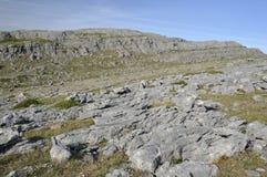 Free Limestone Cliffs Mullaghmore Stock Photo - 24563870