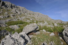 Limestone Cliffs of Mullaghmore Stock Image