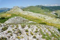 Limestone cliffs in Retezat mountain, Romania Royalty Free Stock Photography