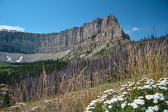 Limestone Cliffs of the Scapegoat Royalty Free Stock Photo