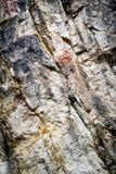Limestone climbing wall Royalty Free Stock Photography