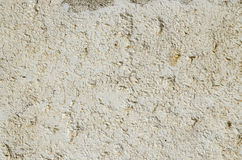 Limestone Stock Image