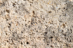 Limestone Stock Images