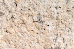 Limestone. Closeup texture of limestone texture background Stock Image