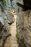 Limestone corridor at Kunming Shilin Royalty Free Stock Photos