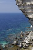 Limestone crags in Bonifacio, Corsica, France Royalty Free Stock Images