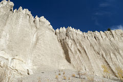Limestone culmns Stock Photography