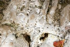 Limestone Deposits. Formed by direct crystallization from water stock image