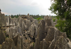 Limestone forest at Kunming Stone forest or Shilin Stock Photo