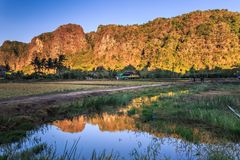 Limestone forest in South Sulawesi Indonesia Stock Images