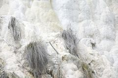 Limestone formation Royalty Free Stock Photos