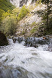 Limestone gorge river in mountains. Limestone gorge in carpathians mountains  fast flowing river Stock Photos