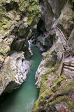 Limestone gorge river in mountains Stock Photography