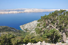 Limestone island in Croatia Royalty Free Stock Photos