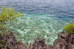 Limestone Island and Reef Scenery. A rugged limestone island is fringed by a healthy reef in Raja Ampat, Indonesia. This region is known to harbor an Stock Photo