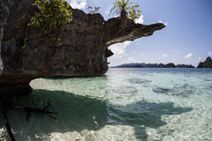 Limestone Island Undercut. A limestone island in Raja Ampat, Indonesia, has been eroded at the waterline. Limestone is easily eroded and waves, carbonic acid Stock Images