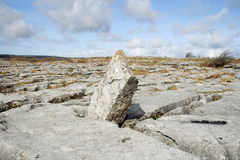 Limestone landscape Royalty Free Stock Images