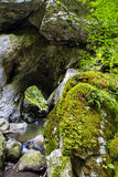 Limestone landscape Stock Images
