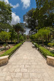 Limestone path in beautiful summer gardens of Palazzo Parisio, Naxxar, Malta, Europe. Blue skies and lush green park, with Limestone path in beautiful summer Stock Photos