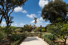 Limestone path and blue skies in beautiful summer gardens of Pal. Blue skies and lush green gardens, Limestone path in beautiful summer gardens of Palazzo Royalty Free Stock Images
