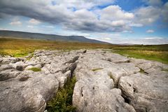 Limestone Pavement Royalty Free Stock Image