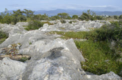 Limestone Pavement Royalty Free Stock Images
