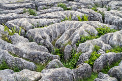 Limestone pavement Mahlam Cove Yorkshire Dales England Stock Photos