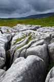 Limestone Pavement Royalty Free Stock Photos