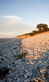 Limestone pebble beach Royalty Free Stock Images