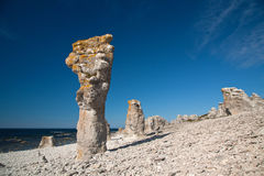 Limestone pillars Stock Images