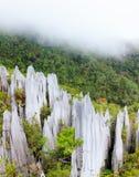 Limestone pinnacles at gunung mulu national park stock photo
