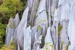 Limestone pinnacles at gunung mulu national park royalty free stock photos