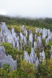 Limestone pinnacles at gunung mulu national park royalty free stock photography