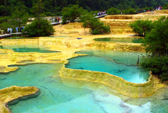Limestone pools in Huanglong. Nature protection area, Sichuan province, South-West China Royalty Free Stock Photo