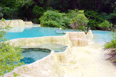 Limestone pools in Huanglong. Nature protection area, Sichuan province, South-West China Royalty Free Stock Images