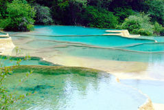 Limestone pools in Huanglong Royalty Free Stock Images