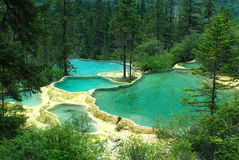Limestone pools in Huanglong Stock Photography