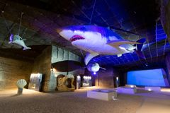 Life-size Megalodon, Kentriodontid dolphin and fossils. The so called `theme park` exhibition at the limestone quarry cave in Fertorakos, Hungary. A life-size stock photography