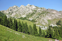 Limestone ridge, Iorgovanului cliff in Retezat mountain, Romania Royalty Free Stock Images