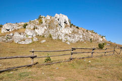 Limestone rock Stock Images