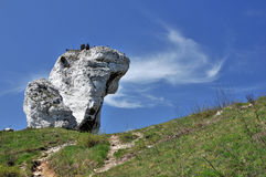 Limestone rock Royalty Free Stock Photos