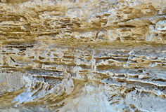 Limestone rock Royalty Free Stock Photo