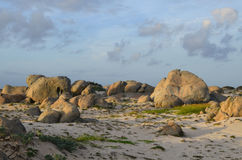 Limestone Rock Formations on the White Sand Beach of Aruba Stock Image