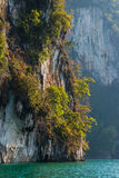 Limestone rock and green trees above clear blue water. Limestone rock texture and green plants above clear blue water. Mountains in Khao Sok national park, Cheo Royalty Free Stock Image