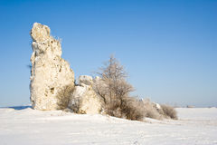 Limestone rock in Jura Krakowsko-czestocho wska. Poland Royalty Free Stock Images