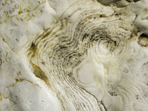 Limestone Rock Layers Royalty Free Stock Photography